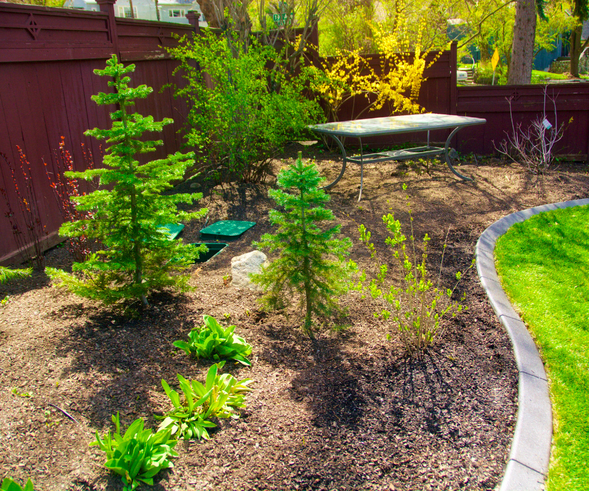 Decorative Curbing and Landscape Install